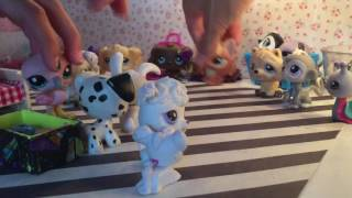 LPS: A Trip To the Pet Store