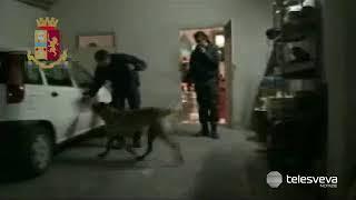 ANDRIA | Rapine e sequestri agli autotrasportatori, presa la banda: undici arresti della Polizia