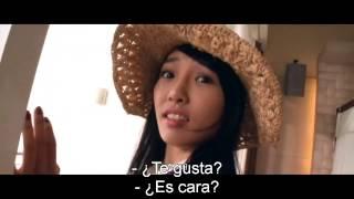 Stolen years-subtitulada al español