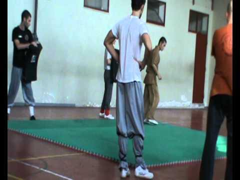 Xxx Mp4 Stage Kung Fu Shaolin Kung Fu Quan Colleferro Shi Hen Liu Peng 24 E 25 09 2011 Sanda 2 3gp Sex