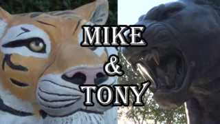 Mike & Tony: Behind the Stripes
