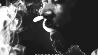 Snoop Lion - Tired of Running feat. Akon (Reincarnated)