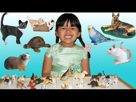 Pets Learn Animal Names and Sounds with Animal Toys Educational for Kids