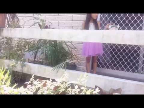 Lily's secret admirer ЁЯЩИ|| purnima & kiran