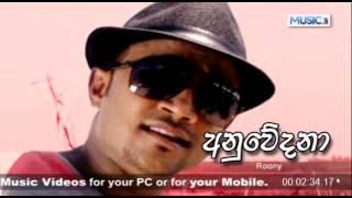 Anuwedana - Roony