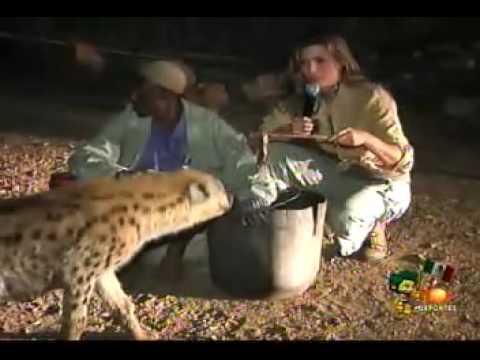 Montserrat Alimentando a Las Llenas O Sudafrica 2010