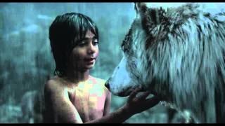 Disney's THE JUNGLE BOOK | Clip | Mowgli Leaves The Pack | In Cinemas Now