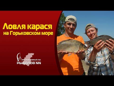 ловим карася в нижегородской области
