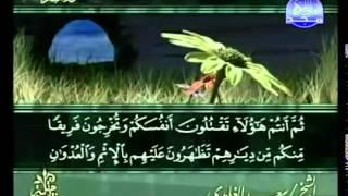 القرآن الكريم كاملا - ختمة الأجزاء - سعد الغامدي