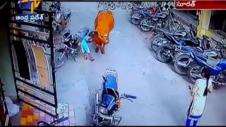 Watch CC footage of | Stray cow attacks a Small Girl in Surat