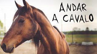 Andar a Cavalo (ou O Segredo de Brokeback MonTavião)