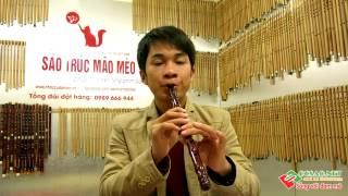 Video Học thổi sáo Hai dòng ngược xuôi - Mão mèo