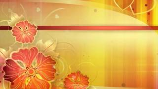 Free Wedding background, Free HD creative Background, Download Video background -Design 03