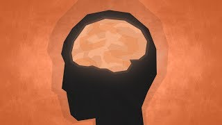 Top 10 Facts - Psychology