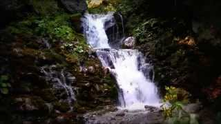 Best 1 Hour - 40 Waterfalls Relaxing Scenes with Cool Mountain Forest River HD waterfall in 1080p