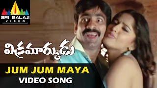 Vikramarkudu Video Songs | Jhum Jhum Maaya Video Song | Ravi Teja, Anushka | Sri Balaji Video