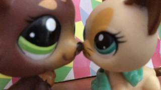 Lps- Stereo Hearts Music Video