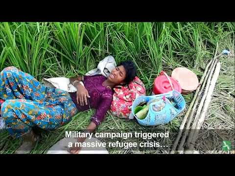 Xxx Mp4 6 700 Rohingya Killed In Myanmar Violence MSF 3gp Sex