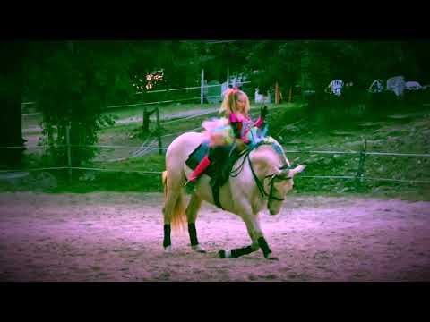 Xxx Mp4 Paolina 💝 Soleado Equestri'Art'Evento 3gp Sex