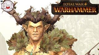 Wood Elves Faction Overview Part 1 - Total War Warhammer