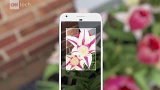 Google lens makes your camera smarter than you