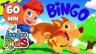 Bingo - Amazing Songs from Hello Mr. Freckles! | LooLoo Kids