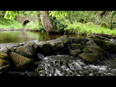 RELAXATION MEDITATION Calming Sound of Wind and Flowing Dripping Water 3D River Nature Sounds