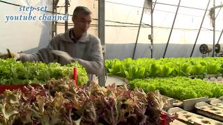 poly house farming  project in hindi part-1