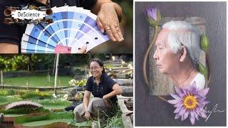 DeScience [by Mahidol] The Passion From Colors ตอน สีในฝันของนักปรับปรุงพันธุ์บัว