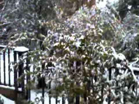 Video0048.mp4     ثلوح الاردن 2-3-2012