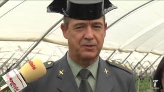 La Guardia Civil inicia su dispositivo de seguridad en la campaña de la fresa