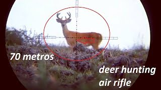 Deer hunting with powerful air rifle
