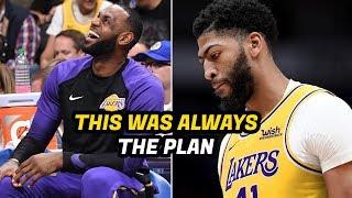What NBA Fans Don