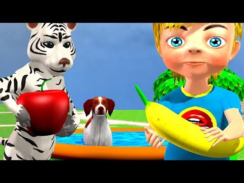 Xxx Mp4 Learn Colors Learn Animals And Fruits With Swimming In Indoor Playground Children Rhymes 3gp Sex