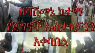 Shashamne Katama Ya Jagnoch Ustazoch Akebebl ብሻሽመኔ ከተማ የጀግኖች  ኡስታዞቻንን አቀባበል
