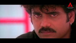 Inka Yedo Kaavalantu Video Song -  Ninne Pelladatha Movie - Nagarjuna,Tabu