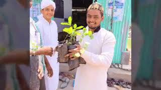 GREEN NATURAL  SAVE TREE SAVE LIFE 2018