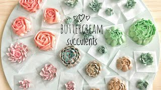 How to pipe buttercream succulents - terrarium cake decorating buttercream succulent piping tutorial
