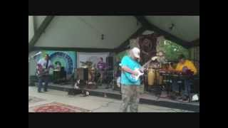 Perfunctory This Band - Jerry Fest 2014 - Grateful Dead Cover Band