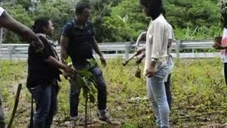 'Greening Garo hills' campaign launched in Meghalaya - ANI News