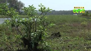 Nod for environment feasibility study for Aranmula airport