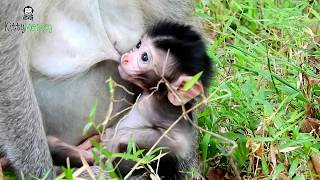 What Mom doing on personal area newborn baby ,she cleaning baby