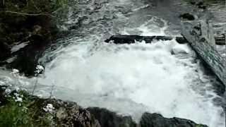 Rijeka Orlja - hladni izvor