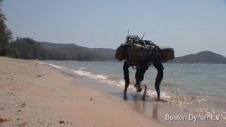 BigDog Beach