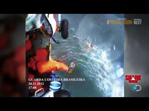 Coast Guard Footage Of Megalodon. Climate Change Megalodon Sightings