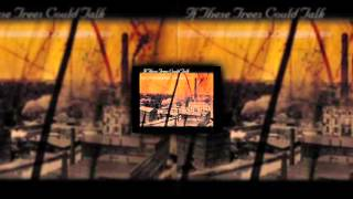 Signal Tree - If These Trees Could Talk [HQ]