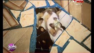 واحد من الناس - مفاجآت جديدة   يكشفها عمرو الليثي في أسرار ظهور صورة حجاج علي أرض منزل بالمنوفية