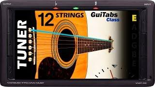 Afinador de Guitarra Acústica de 12 Cuerdas Standard 🎸