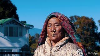 Darjeeling Travel Vlog | FilmsByJubaer