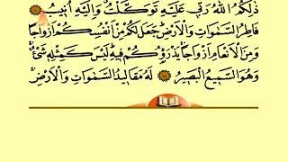 Holy Quran With Arabic and Turkish Text: Juz 25